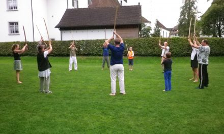 Aikido Open-Air Bokken Jo Suburi-Training in Bremgarten mit Stefan Benz