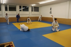 Aikido2018-Aikido-für-Judokas