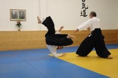 Aikido2019-Dragisha-Gast_08
