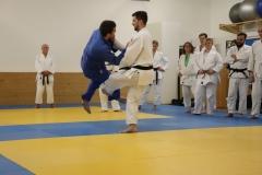 Aikido2018-Judo-für-Aikidokas_35