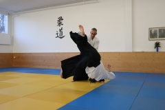 Aikido2019-Samsstage-Stefan-Frühl_55